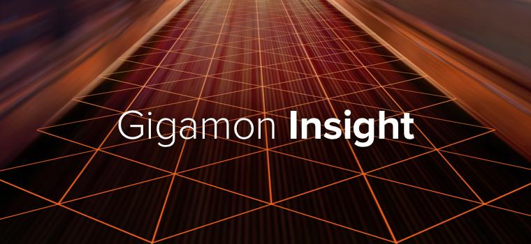 Gigamon Insight